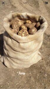 3 x Large Hessian 50cm x 80cm Jute Potato Veg Storage Sacks Bags Misprints