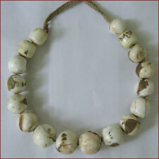 STUNNING LARGE CONCH SHELL BEAD NECKLACE INLAID TURQUOISE CORAL NAGALAND TIBET