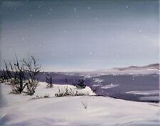 THOM ORIGINAL OIL PAINTING MICHIGAN SNOWY LAKE SHORE 14X11 ON CANVAS WHITE
