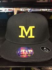 NEW Jordan Men's Michigan Wolverines Blue Head Coach True Fitted Hat
