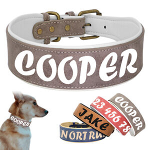 Leather Padded Wide Dog Collar with Custom Personalized Print Dog Name or Phone