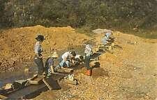 Franklin North Carolina Panning For Rubies And Minerals Vintage Postcard K52375