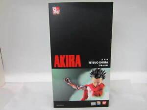 PROJECT BM! AKIRA figure Medicom Toy Tetsuo Shima 1/6 Action Figure Japan