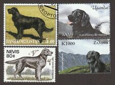 FLAT-COATED RETRIEVER ** Int'l Postage Stamp Art Collection ** Great Gift Idea**