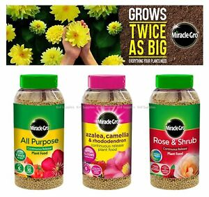 Scotts Miracle-Gro All Purpose Rose Shrub Continuous Plant Food Shaker Jar