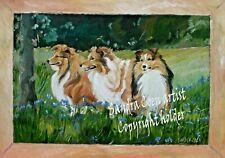 More details for shetland sheepdogs sheltie new original oil painting sandra coen artist canvas