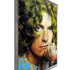 Robert Plant Pop Art Ltd Ed. Celebrity Portrait Urban Decor on Metal or Acrylic