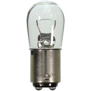 Courtesy Light Bulb fits 1963-1964 Studebaker Avanti  WAGNER LIGHTING