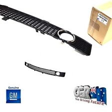 Lower Bumper Grille VY Calais Series 2 Commodore Fog Light Genuine New 92108016
