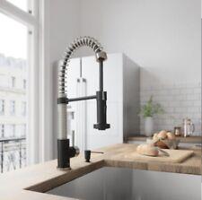 Vigo Edison Pull-Down Sprayer Kitchen Faucet in Stainless Steel/Matte Black