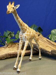 "Giraffe Country Artists Freedom CA03372 Natural World New W/Box 13"" TALL $9.99"