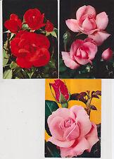 Lot de 13   cartes postales « ROSE DE FRANCE» signé Yvon