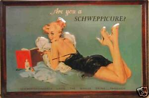 Schweppes Pin up Blechschild Schild Blech Metall Metal Tin Sign 20 x 30 cm