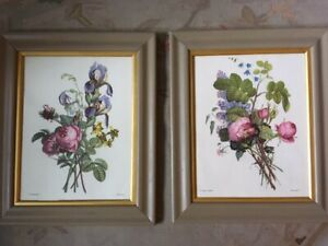 Antique framed botanical flower prints x2
