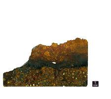 "Pallasite ""JEPARA"" - Slice oxidized crust - 85,66 g - 167 x 97 mm"
