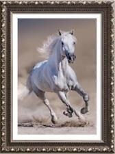 """Hand-painted Original Animals Oil painting art runing horse on Canvas 24""""x36"""""""