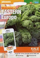 400 semi Johnsons semi-pittura Pack-verdura-Kale nero di toscana
