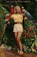 Florida ~ MIAMI PARROT JUNGLE ~ Sexy/Busty woman with birds vintage postcard