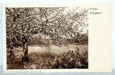 Postkarte 19135 - FROHE PFINGSTEN!