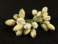 Stamens Fuzzy Double Ended Vintage Flower Crafts Dolls Millinery Wedding