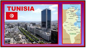 TUNISIA - SOUVENIR NOVELTY FRIDGE MAGNET - SIGHTS / FLAG / BRAND NEW / GIFTS