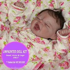 REBORN VINYL KIT ~Baby Sydney by Pat Moulton ~ Reborn doll kit~ 20 inch kit DIY