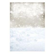 Thin Vinyl Studio Christmas Backdrop CP Photography Prop Snow Photo Backgro M5C1