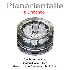 Original Planarienfalle Parasiten Plattwürmer Würmer Falle Aquarium KEINE CHEMIE