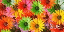 GERBER DAISY FLOWER BRIGHT CHECKBOOK COVER