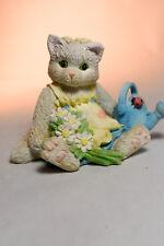 Calico Kittens: Planting the Seeds of Friendship - 623347 - Kitten in Gargen