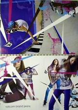 Volcom 2008 skateboard Lyn-Z Adams Hawkins 2 sided poster New!