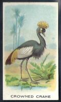 WILLS OTHER OVERSEAS-ANIMALS & BIRDS (WITH SERIES TITLE)- CROWNED CRANE