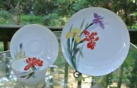 Rossetti Hand Painted Set Cup,Saucer,Dessert Plate Made in Japan with Chips