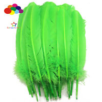 10-100pcs Fruit green 10-12inch Turkey Quill Feathers for Fashion Decorations