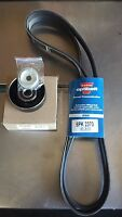 HOLDEN COMMODORE V6 .. VN VP and VR FAN BELT & TENSIONER PULLEY KIT .. NEW