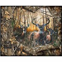 Realtree Daybreak Edge, Scenic Deer Fabric Panel
