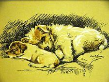 Lucy Dawson 1937 WATCHFUL MOM & SEALYHAM PUPPY Vintage DOG Art Print Matted