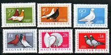 HUNGARY - 1957. International Pigeon Exhibition - Birds - MNH