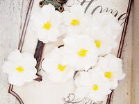 KRYSTAL 9 Pack WHITE Floral with Yellow Centre - PAPER - 40-45mm Manor House