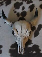 Faux TAXIDERMY Cow Skull Horns WALL DECOR Lodge Hunting WESTERN
