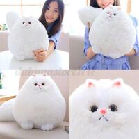 30CM Stuffed White Persian Cat Dolls Soft Plush Pillow Animal Toy Kids