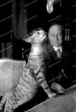 Negativ-Mann-Katze-German-Man-Cute-Cat-1930er Jahre-1930s-1