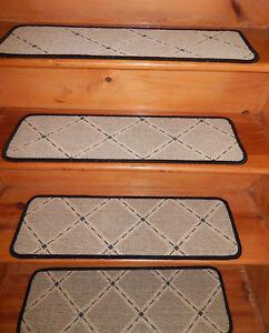 13 Step  9'' x 29''  + 1 Landing 25'' x 29''  Sisal Natural 50% Wool 50% carpet.