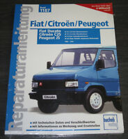 Reparaturanleitung Fiat Ducato Citroen Jumper J5 C25 Peugeot Benzin + Diesel NEU