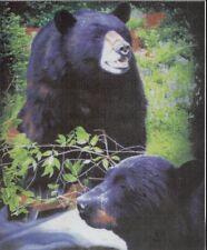 "Original Black Bears Fleece throw Blanket 50"" x 60"" Licensed new"