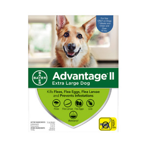 Advantage II For Extra Large Dogs Over 55 lbs, 6 Pack BLUE