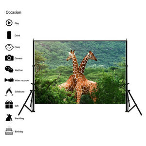 Giraffes Animal Photography Background Wall Backdrop Prints Decor AA1