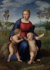 Madonna of the Goldfinch Raffael Sankt Maria Jesus Buch Kinder Fink B A3 03143