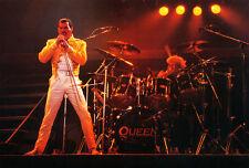"Queen Freddie Mercury13 x 19"" Photo Print"