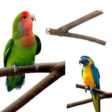 Pet Parrot Wood Fork Bird Cage Standing Rack Holder Branch Perches Bird Supplies